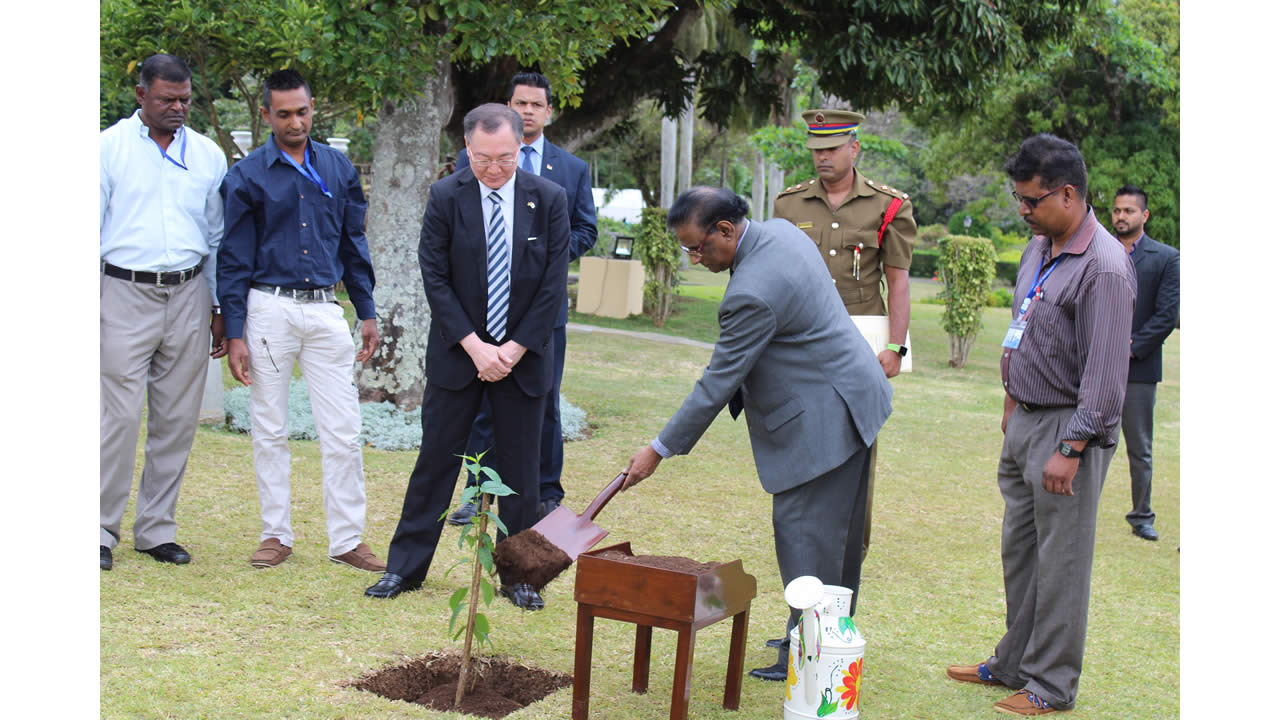 At the State House garden, the first Japanese Cherry Blossom tree, symbol of friendship with Japan planted in Mauritius by the acting president, Barlen Vyapoory.