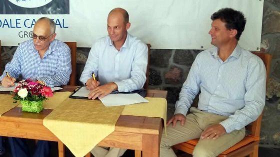 Diversification agricole : St Felix Agri se lance dans l'élevage d'ovins