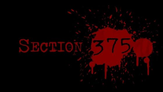 Section 375 : Marzi Ya Jabardasti : L'abus des lois anti-viol en Inde