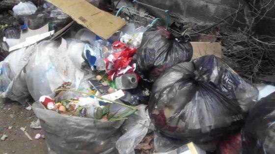 À Terre-Rouge : le ramassage d'ordures irrégulier décrié