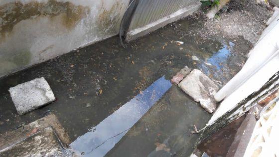 À Beau-Bassin : une fosse septique qui déborde 14 fois