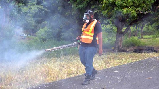 Épidémie : deux nouveaux cas de dengue à cité-La Cure