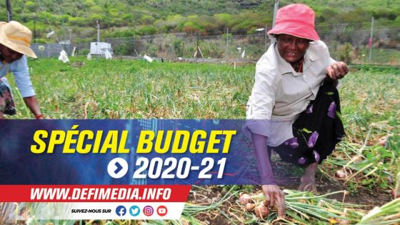 Budget 2020-2021 : un National Agri Food Development Program annoncé