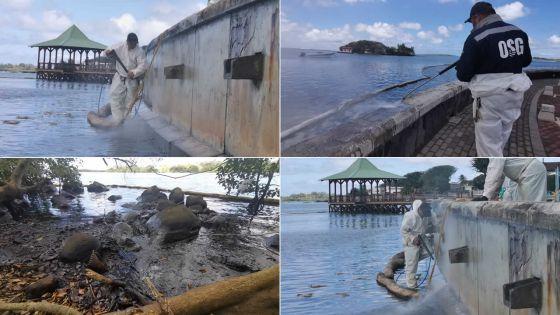 Wakashio : grand nettoyage de Pointe-d'Esny au Mahébourg Waterfront en passant par Rivière-des-Créoles