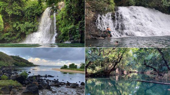 Restauration des Écosystèmes : ces lieux sauvés par les amoureux de la nature