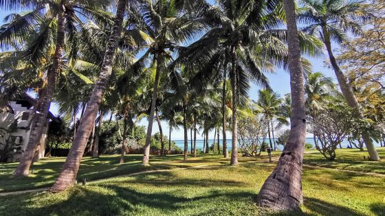 Tourisme : sans réouverture, les Français quittent Maurice pour les Seychelles