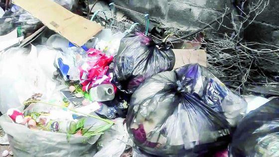 Ramassage d'ordures à Quatre-Bornes - la mairesse : « On n'a pas de budget »