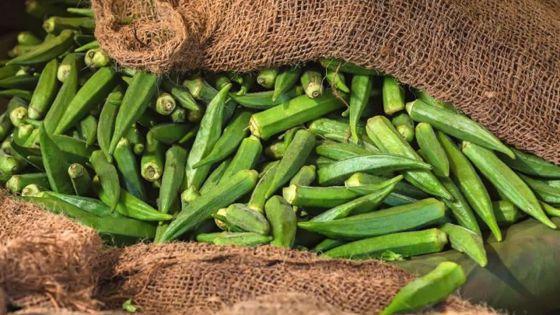 Au marché : le demi-kilo lalo à Rs 150