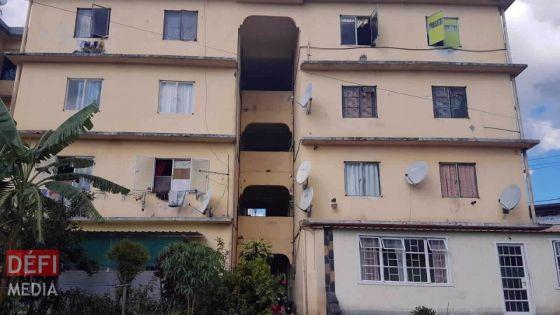 Camp-Levieux : les appartements de la NHDC infestés de punaises
