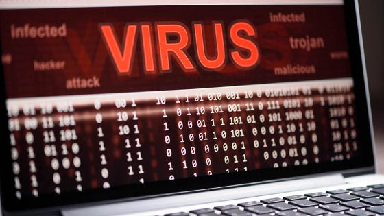 Cyber sécurité -Anna Collard : «Maurice estl'un des pays les mieux préparés»