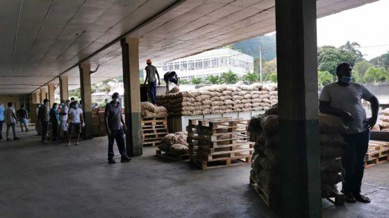 Stockage excessif d'oignons : Maneesh Gobin lance une mise en garde aux revendeurs