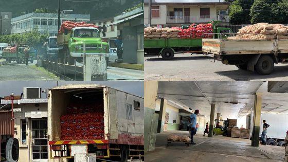 Agricultural Marketing Board : les gros distributeurs et supermarchés serviront de relais de livraison de légumes aux boutiques