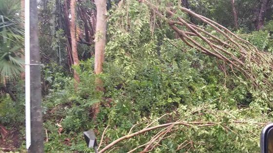 Rodrigues : les premiers dégâts sont importants après le passage du cyclone tropical intense Joaninha