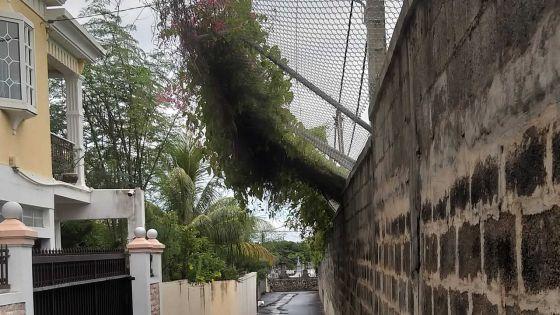 Collège Royal de Port-Louis : une barrière qui menacede s'effondrer