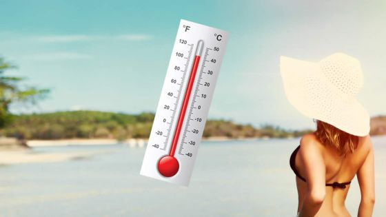 Hot summer season : cautionary measures to tacklethe heat