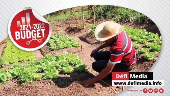 Budget 2021-22 : Secteur agricole - En savoir plus sur les prêts