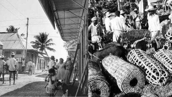 Exposition :Rodrigues prend place au Blue Penny Museum