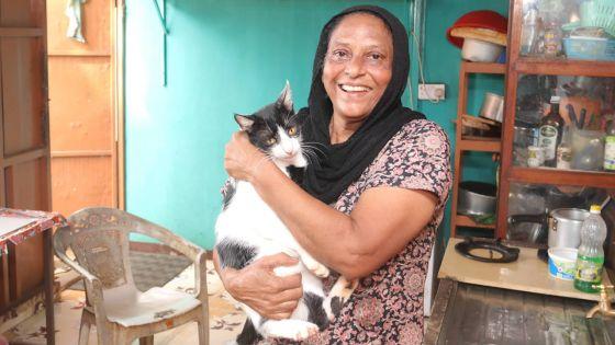 Le petit monde de Faouzia Salaroo : partagée entre un groupe animalier et des plantes