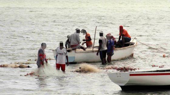 770 cas de pêche illégale