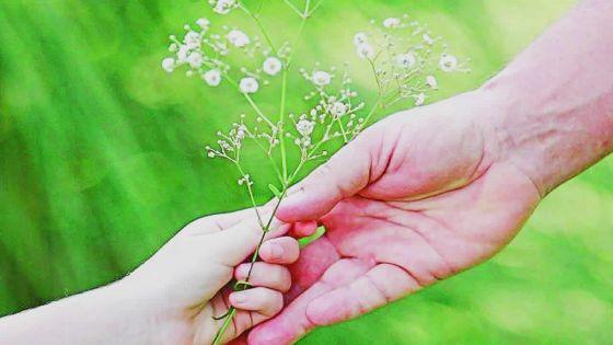 Journée de sensibilisation à la bientraitance des aînés