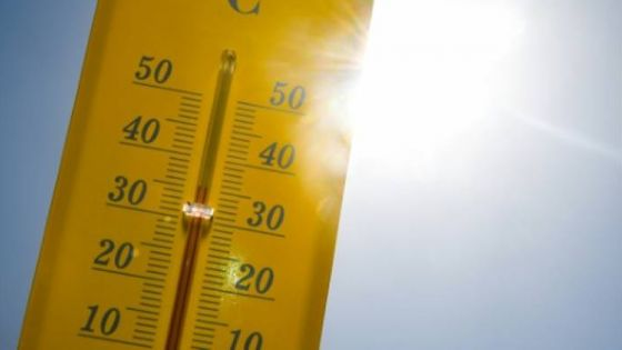 Météo : la chaleur persistera jusqu'à lundi