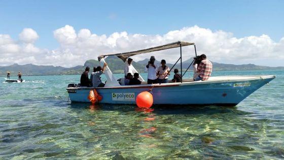MV Wakashio : nettoyé, le littoral du sud-est recouvre … son éclat
