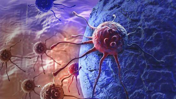 Cancer infantile : la présence d'un médecin spécialiste référent demandée