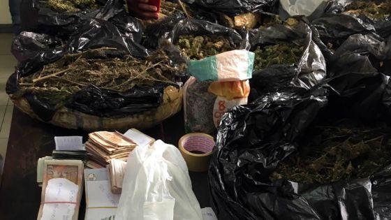 Saisie de Rs 9 M de cannabis : une première arrestation effectuée