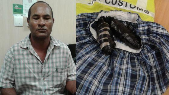 En provenance de Madagascar : un voyageur intercepté avec Rs 5,6 millions de drogue cousue dans son boxer