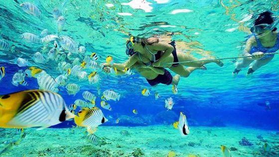 Autour des aires marines protégées : des emplois alternatifs recherchés  pour les anciens pêcheurs