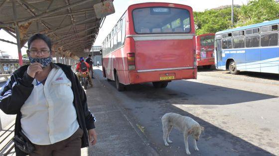 Gare de Cité Vallijee : deux receveuses d'autobus victimes de morsures de chiens errants