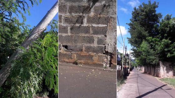 Concasseuse abandonnée, arbres dangereux et mur qui penche : attention danger à Le Hochet !