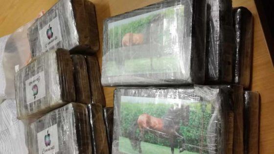 Saisie de 95 kilos de cocaïne : les empreintes de six mécaniciens examinées