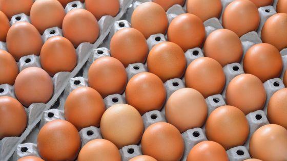 Les prisonniers mangent425 000 œufs par an