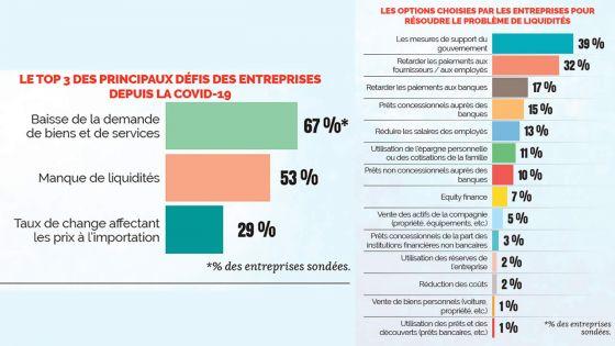 Étude de Business Mauritius/Statistics Mauritius :41 % des entreprises sondées ont moins de 3 mois de trésorerie