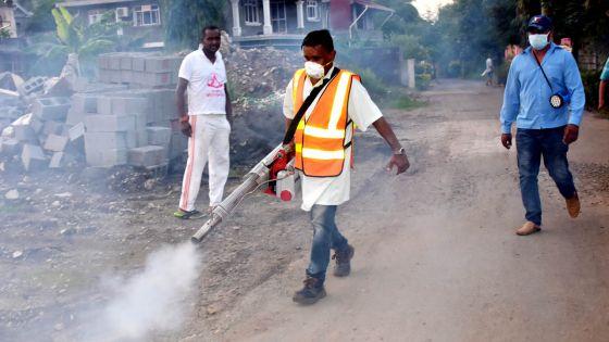 Dengue : 54 cas enregistrés à ce jour