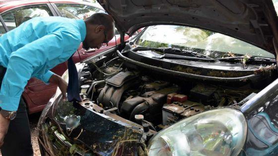Crues subites : les récents modèles de voitures davantage vulnérables