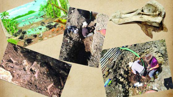 Ossements du Dodo : Mare-La-Chaux nous livre ses secrets
