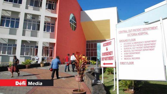 Quatre-Bornes : un officier de la Commission électorale mordu par un griffon