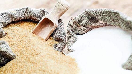 Agro-industrie : la production sucrière chute de 18% en 2020