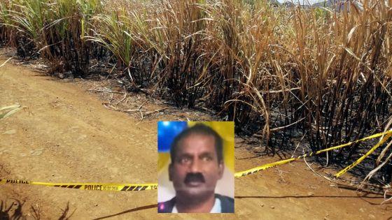 Retrouvé carbonisé dans un champ de cannes : zones d'ombre autour de la mort de Soopramanien Kistnen
