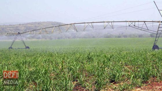 Enquête sur l'Irrigation Authority : le rapport rendu public incessamment