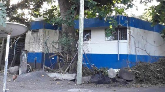 Cap-Malheureux : un badamier incommode les habitants