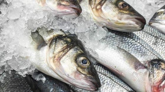 Produits impropres à la consommation :72,5 kilos de poissons saisis