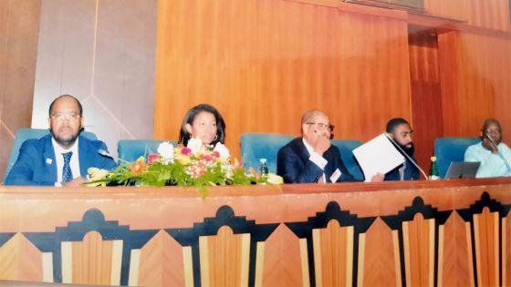 Droits des minorités : réunion pour la décennie internationale des personnes d'ascendance africaine – Région Afrique 2019