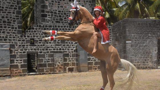 Le fabuleux Noël de Noémie Barragan