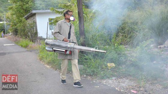 Dengue : une dizaine de personnes infectées à Roche-Bois