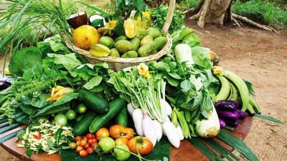 Bio crops : Increasing Demand in Spite of High Price