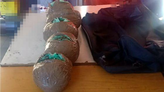 Maurice/Réunion Connection : quatre arrestations après la saisiede sept kilos de cannabis estimés à Rs 10 M