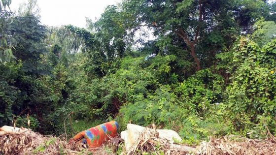 À travers villes et villages : le sempiternel problème des terrains abandonnés